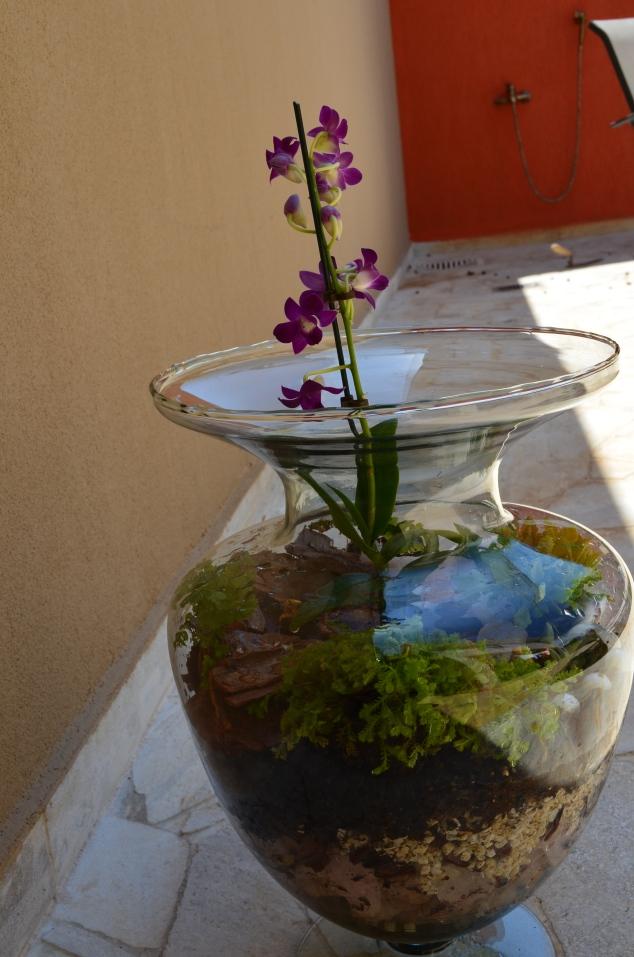 a taça com a orquídea e o budinha!