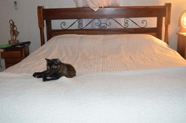 mantinha fluffy e edredon do tamanho da cama e branquinho