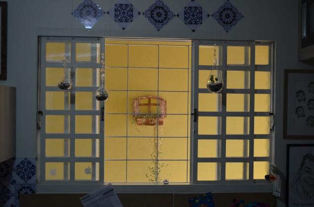 a janela e os terrários