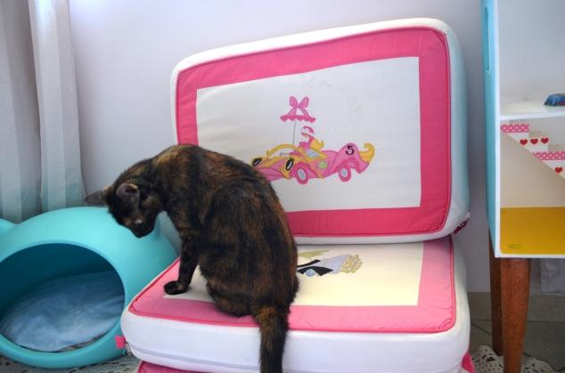 Porque nossas gatinhas podem tudo! Ainda mais com esta pelagem turtle!!! :P