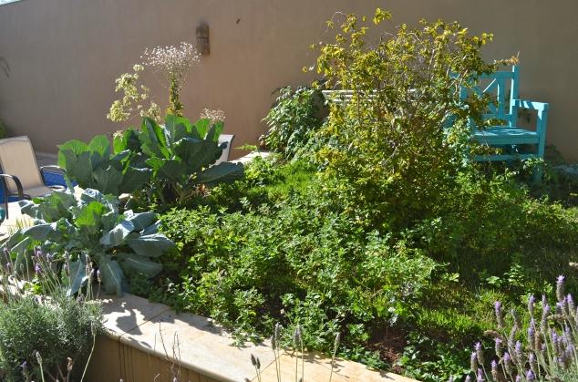 A hortinha, que agora já vai bem sozinha...