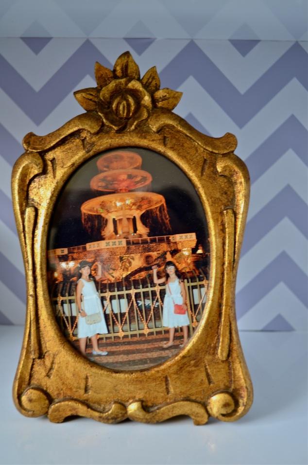 As pragas na fonte em Novo Horizonte. O porta-retratos eu comprei numa venda de garagem a long time ago...
